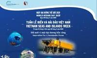 กิจกรรมต่างๆเพื่อขานรับสัปดาห์ทะเลและเกาะแก่งเวียดนามและวันมหาสมุทรโลกปี 2020