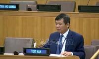 เวียดนามยกย่องการสนทนาและการไกล่เกลี่ยในการแก้ไขการปะทะในคองโก