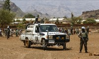 เวียดนามชื่นชมส่วนร่วมของ UNAMID