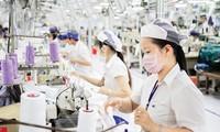 เวียดนามได้เปรียบดุลการค้า 1.44 พันล้านดอลลาร์สหรัฐในการส่งออกไปยัง 6 ประเทศสมาชิกCPTPP