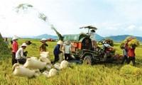 Denmark helps Dak Lak province develop agriculture