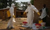 Ebola death toll surpasses 1200