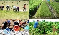 Breakthrough changes for rural economy