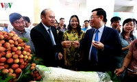 Seminar on promoting Bac Giang litchis opens