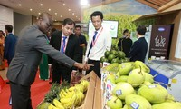 Middle-East, Africa - noted potential markets for Vietnam