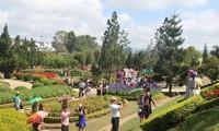 Da Lat flowerfest returns with  cultural extravaganza