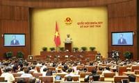 Vietnam-Cambodia land border issues debated at NA