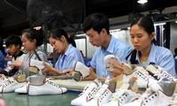 Footwear exports to earn 24 billion USD in 2020
