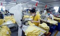 Vietnam prepares for post-COVID-19 development stage