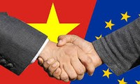 NA to ratify EVFTA shortly