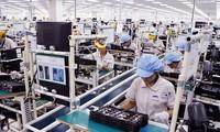 Vietnam informs EU of NA's adoption of EVFTA, EVIPA
