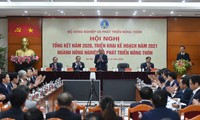 Vietnam's agriculture targets 3% growth in 2021