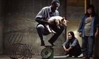 Vietnamese movie wins Special Jury Award at 71st Berlinale