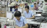 越南促进性别平等工作取得长足进步