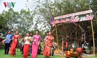 2019年越南民族文化日开幕活动举行