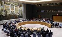 联合国安理会首次讨论新冠肺炎疫情问题