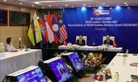 马来西亚媒体强调越南对东盟的贡献