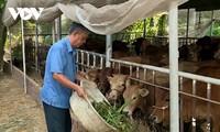 越南优秀农民杨文造一心一意帮助贫困户