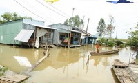 """""""Climate change water supply in the Mekong River Delta"""" project makes it debut"""