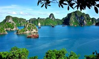 Vietnam's cultural development strategy until 2020 yields encouraging results
