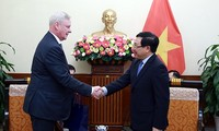 Deputy PM, FM Pham Binh Minh receives Russian diplomat