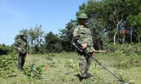 Vietnam, RoK address post-war bombs, mines