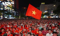 Vietnam's red flag with yellow star – symbol of vitality
