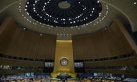Iran, Central African Republic lose voting rights in UN General Assembly