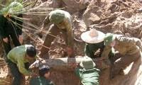 Vietnam y EEUU impulsan cooperación para superar secuelas de la guerra