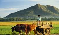 Cambios y mejoras en las tierras étnicas de Binh Phuoc