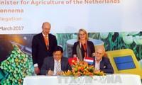 El cambio climático y la agricultura, dos áreas prioritarias en la cooperación Vietnam-Holanda