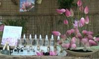 Celebran en Dong Thap la Fiesta de Loto