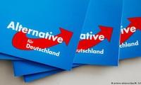 AfD superará al SPD para convertirse en el segundo partido más grande en Alemania