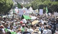 Manifestantes argelinos protestan contra el gobierno