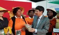 Vietnam participa en la Feria Internacional de Mozambique