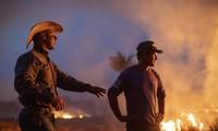 Brasil rechaza ayuda del G7 destinada a extinguir incendios en la Amazonía