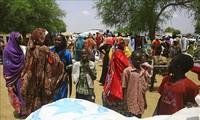 ONU pide asistencia urgente para Sudán