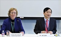 Vietnam preside reunión del Comité de la Asean en la ONU