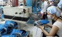 Exportación de calzado de cuero de Vietnam en 2020 alcanzaría 24 mil millones de dólares