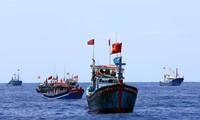 Asociación vietnamita de Pesca rechaza estatuto de prohibición de pesca en Mar del Este