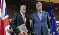 UE y Reino Unido entran en nueva ronda de negociaciones comerciales después del Brexit