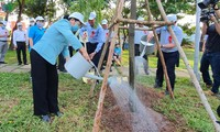 Ciudad Ho Chi Minh lanza campaña de plantación de árboles