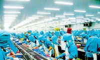 Gobierno vietnamita planea dos escenarios de crecimiento económico para 2020