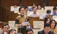 Enaltecen el poder de la juventud vietnamita en la construcción del país