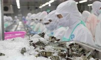 Arabia Saudita permite restablecer actividades de exportación de productos acuícolas vietnamitas