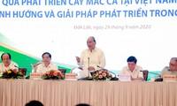 Premier vietnamita insta a realizar planificación de áreas cultivadas de macadamia