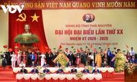 Vicepremier vietnamita urge a Thai Nguyen a avanzar hacia un desarrollo rápido y sostenible