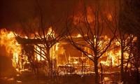 Los desastres naturales cuestan 187 mil millones de dólares al mundo en 2020