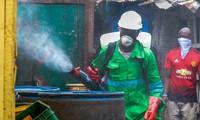 G7 planea recaudar 500 mil millones de dólares en respuesta a la pandemia del covid-19