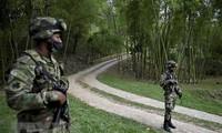 La ONU insta a Colombia a detener la violencia y cumplir el acuerdo de paz con las FARC